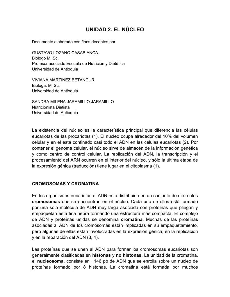 El Núcleo Archivo Universidad De Antioquia