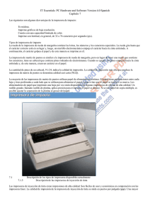 Capitulo 7 PC Hardware and Software Version 4.0 Spanish