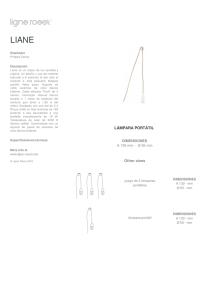 JK-2 Segmento de Disco de muela abrasiva de Diamante de 10 cm 6 Agujeros para Piedra de hormig/ón de m/ármol