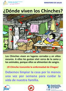 online store b9b22 b149d Tiempos Oscuros - hosting - dominios