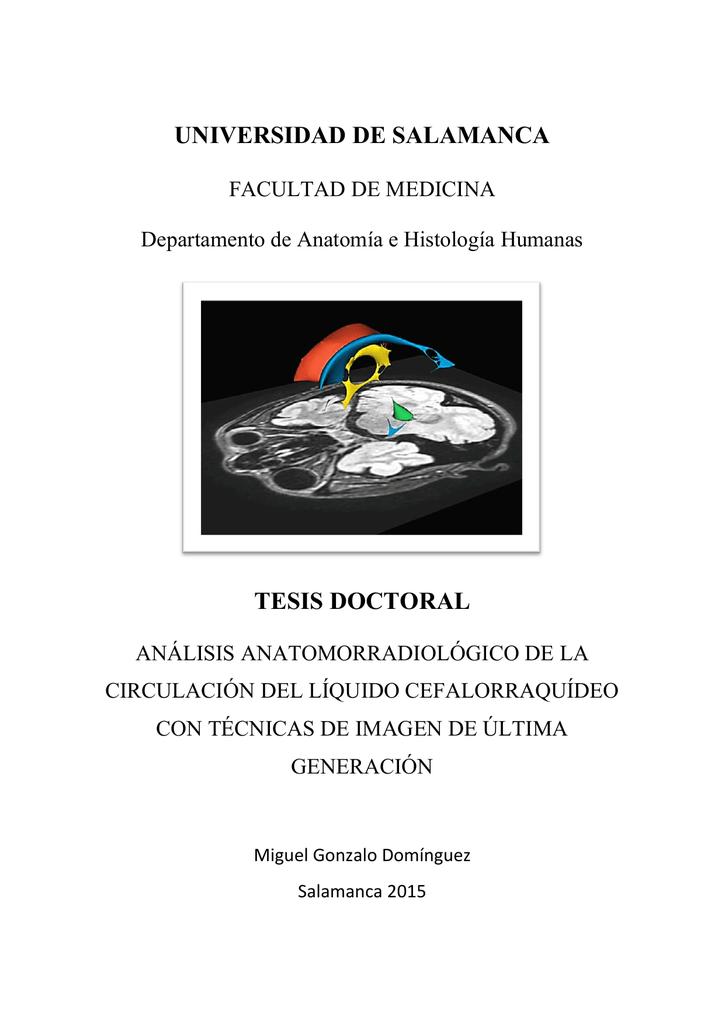 análisis anatomorradiológico de la circulación del líquido