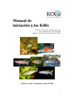 Manual de iniciación a los Killis