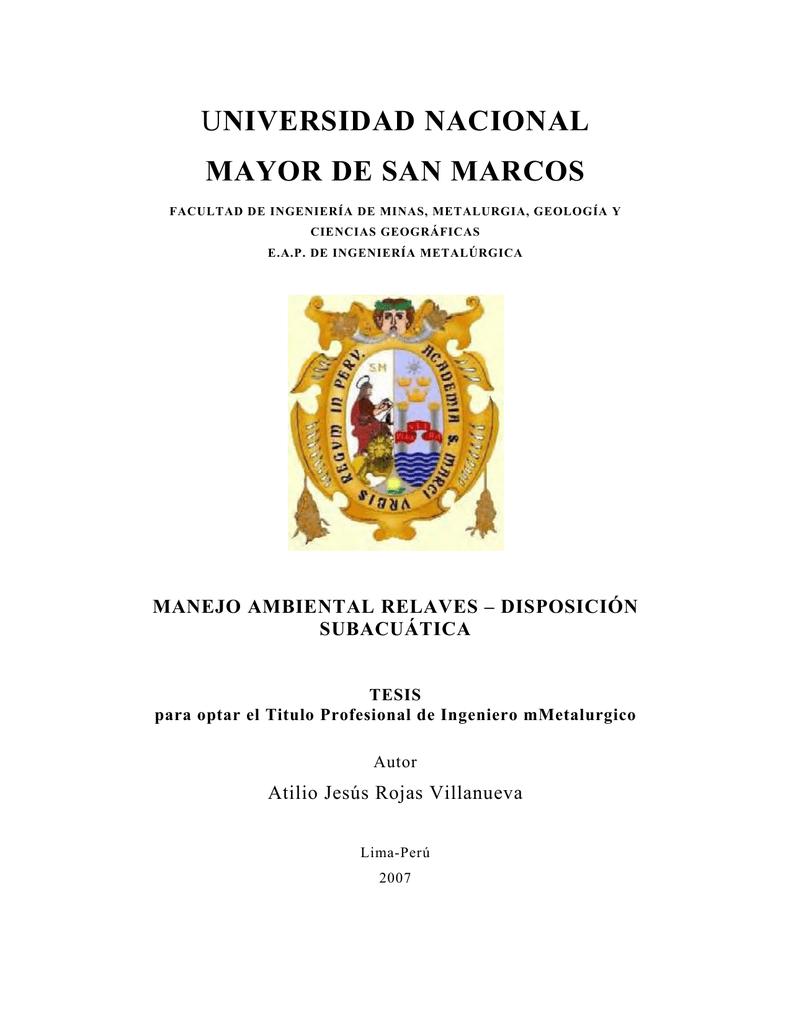 Cybertesis UNMSM - Universidad Nacional Mayor de San Marcos
