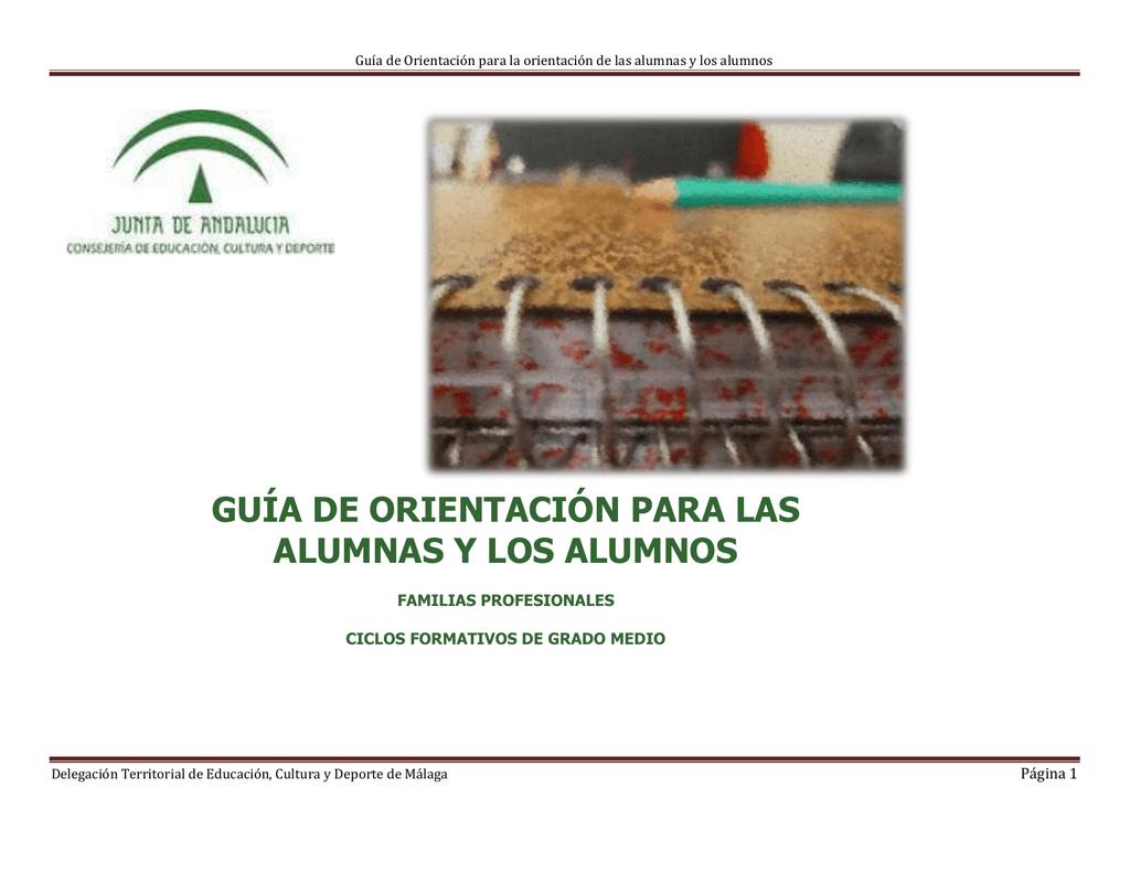 Ciclos Formativos De Gm Y Notas De Corte De Málaga Y Su