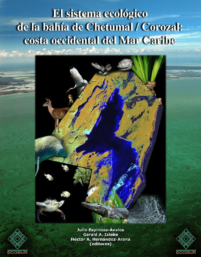653385e88b4 El Sistema Ecológico Bahía de Chetumal   Corozal  Costa