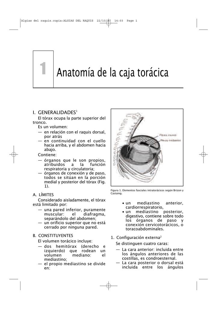 Algias del raquis.copia_ALGIAS DEL RAQUIS