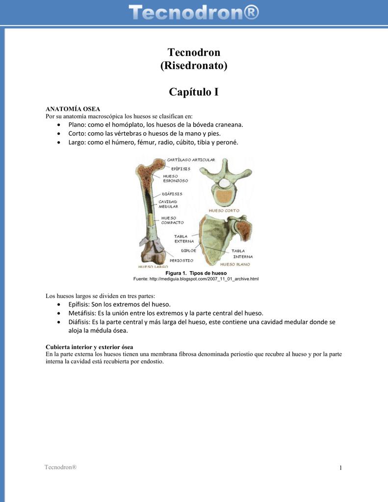 Describe de manera fácil una introducción de la patología