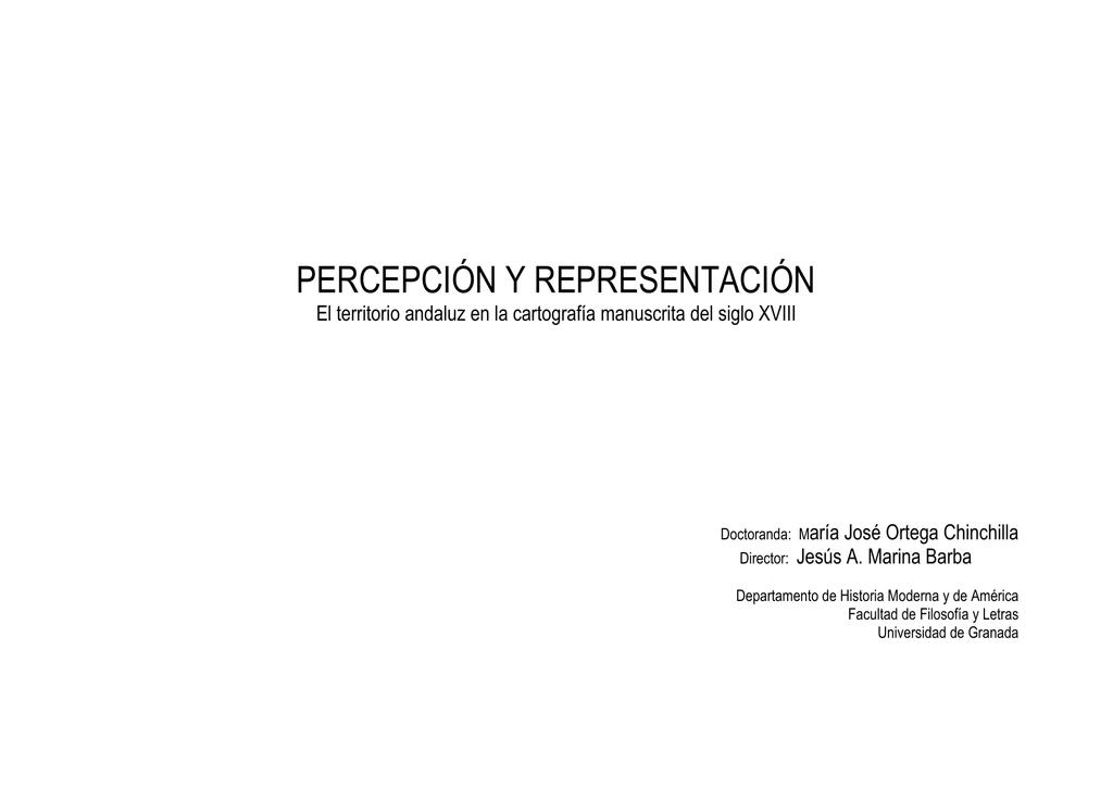 Percepcin Y Representacin