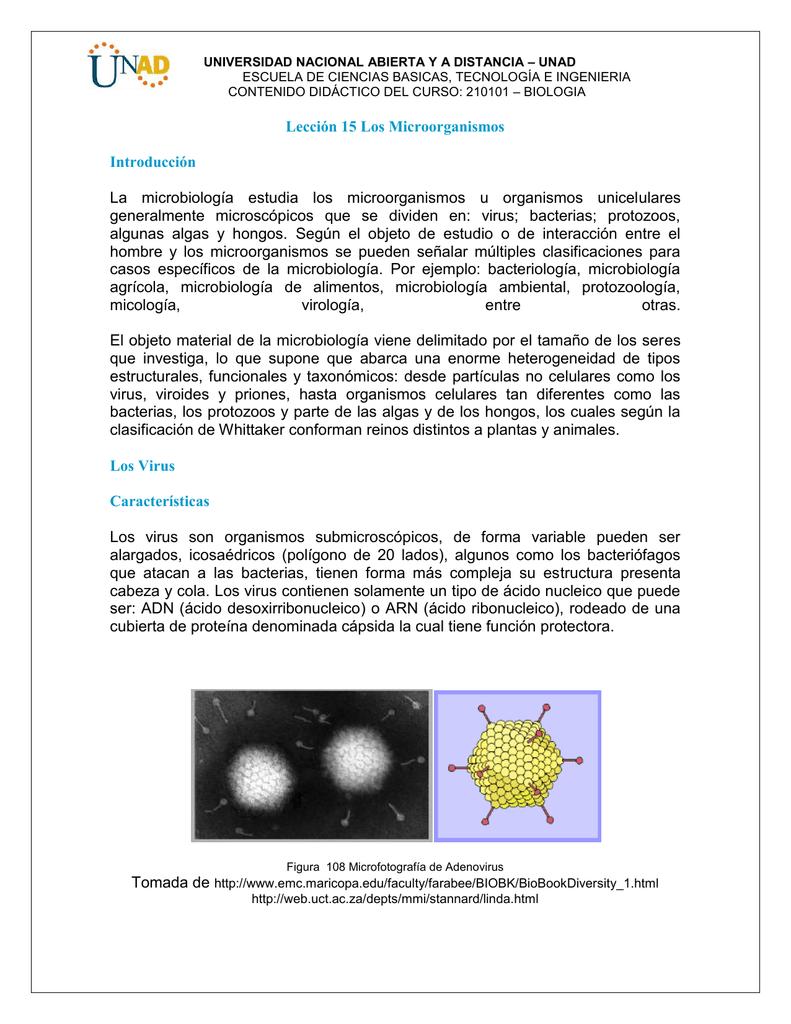 Lección 15 Los Microorganismos Introducción La Microbiología