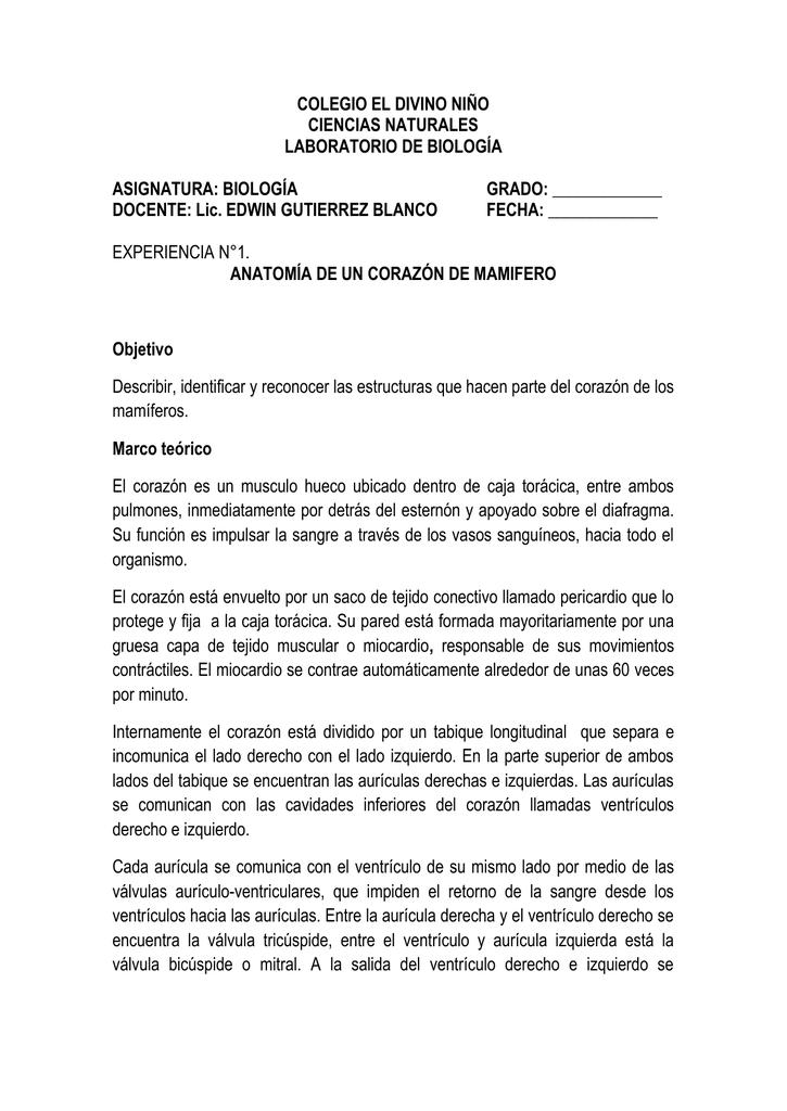 Famoso AnatomÃa De Las Respuestas Hoja De Trabajo Del Corazón ...
