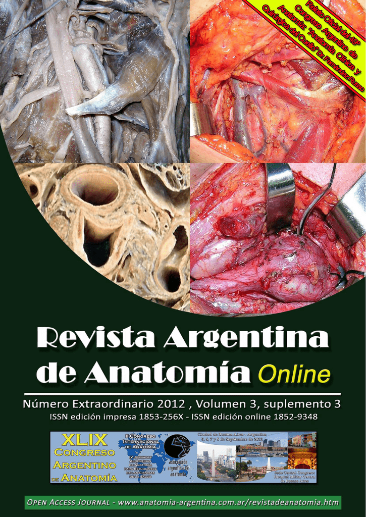 Fernandez Russo, G.A.H. Anatomía Clínica y Quirúrgica del Cuello