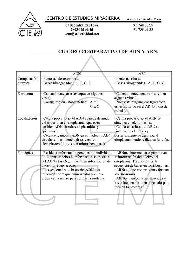 Apunte Biología Cuadro Comparativo De Adn Y Arn