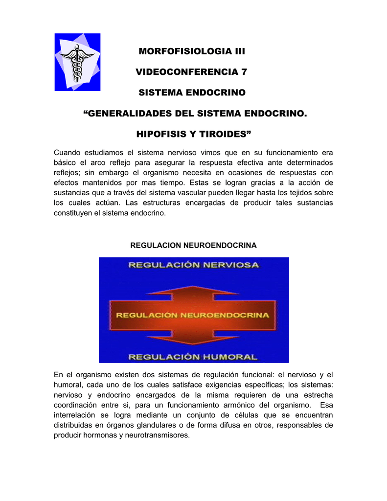 generalidades del sistema endocrino. hipofisis y tiroides