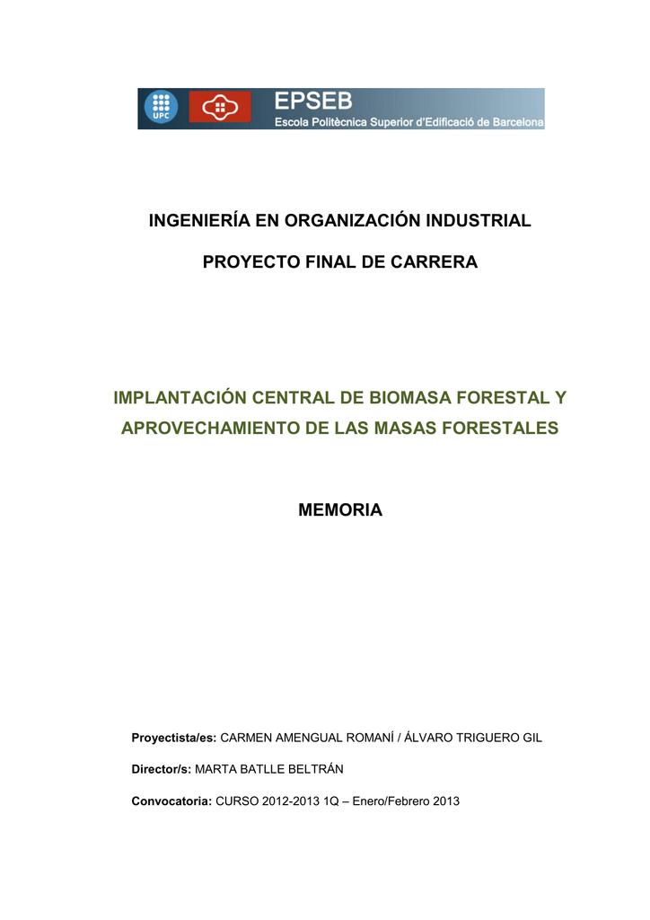 montaje superior versus sumideros IMPLANTACIN CENTRAL DE BIOMASA FORESTAL Y