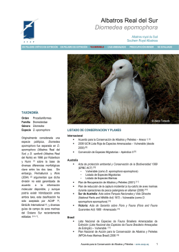 Albatros Real del Sur - Agreement on the Conservation of