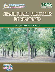 guia manejo forestal final