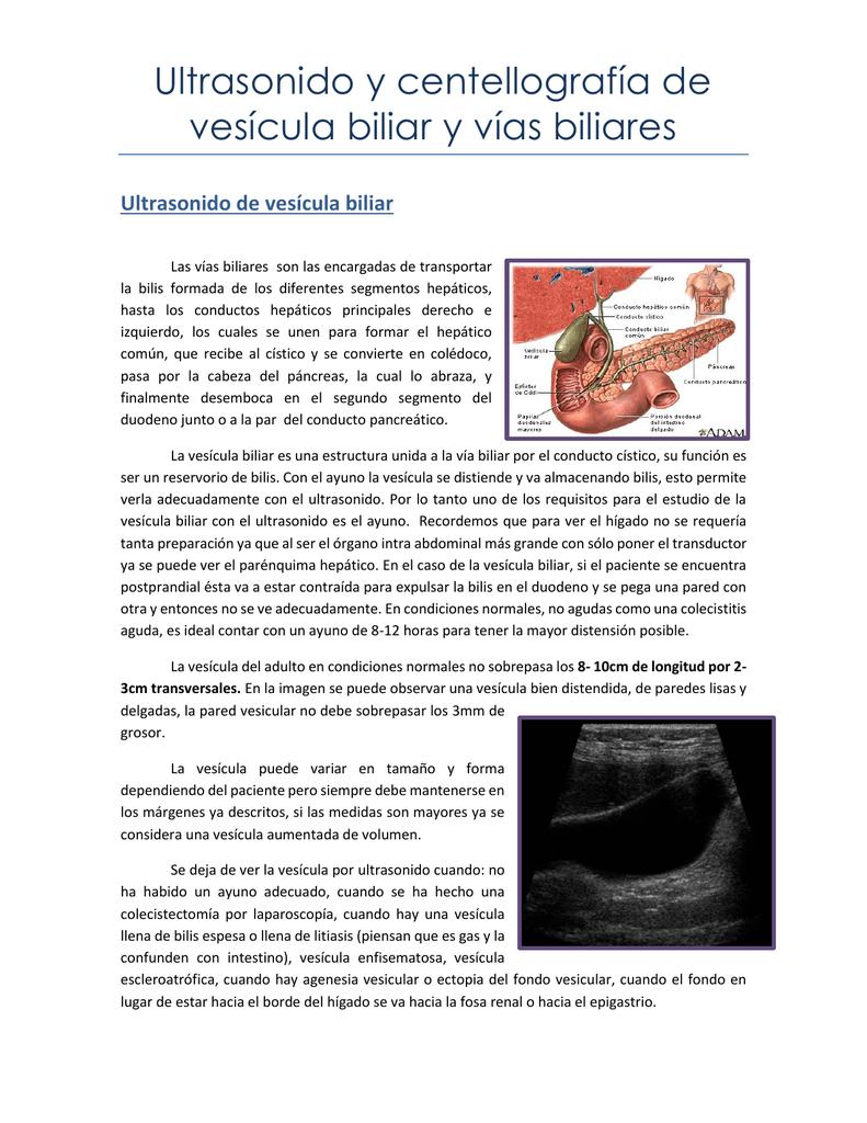 Ultrasonido y centellografía de vesícula biliar y vías biliares
