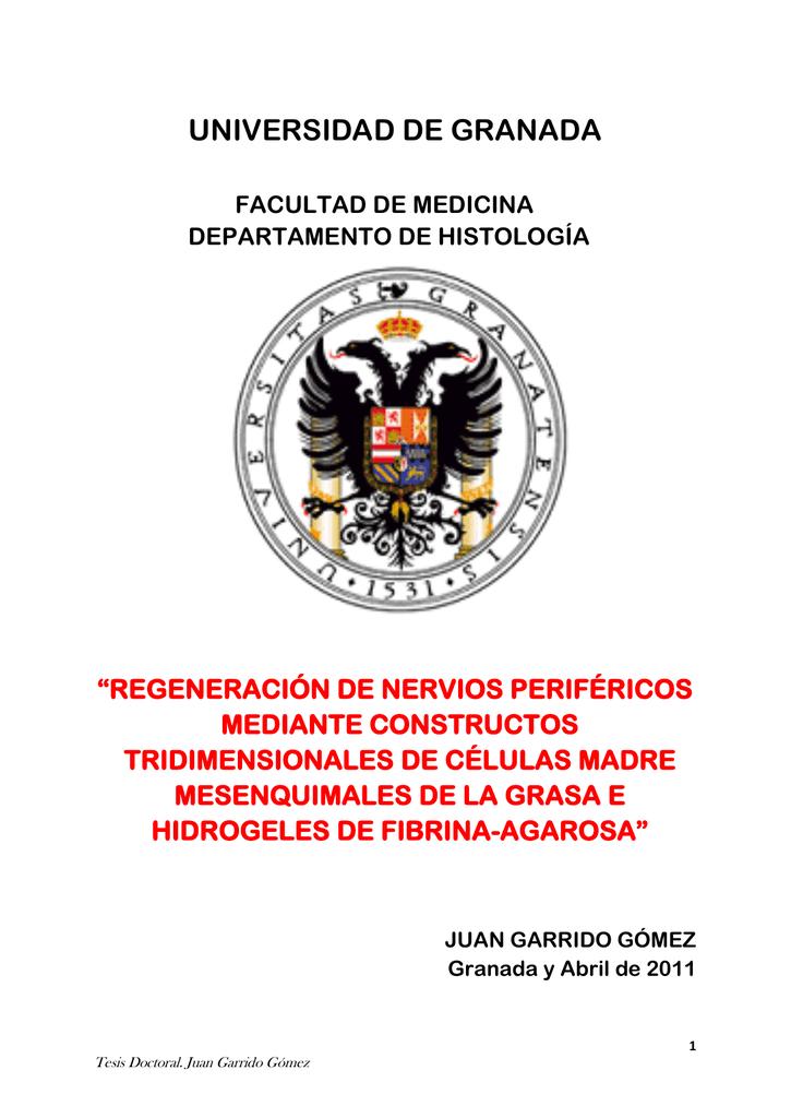 agradecimientos - Universidad de Granada 2ead63def99