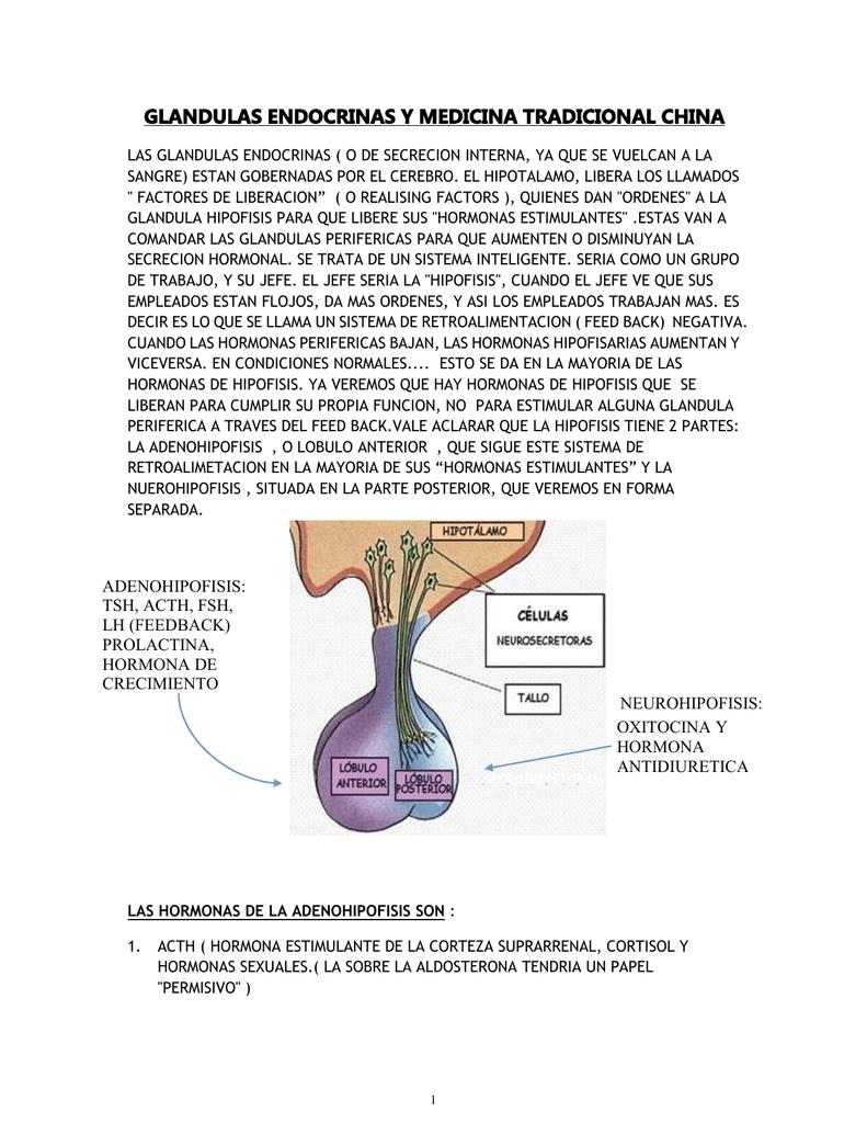 Aldosterona funcion de la hormona