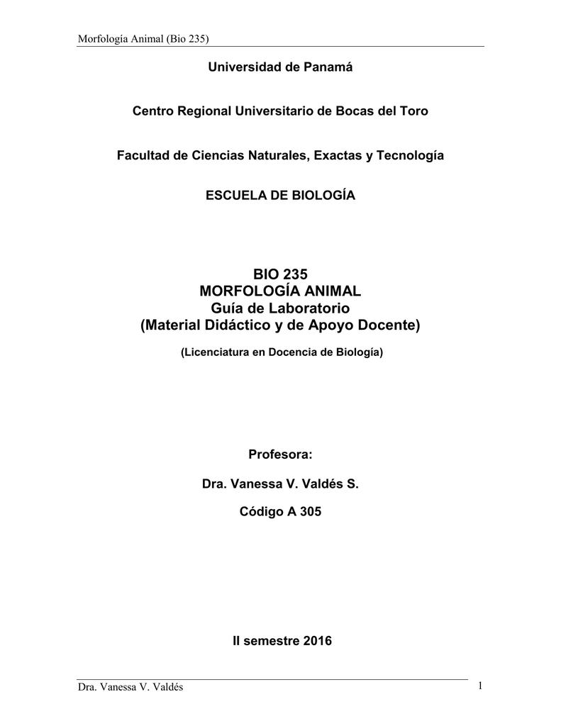File - MORFOLOGÍA ANIMAL