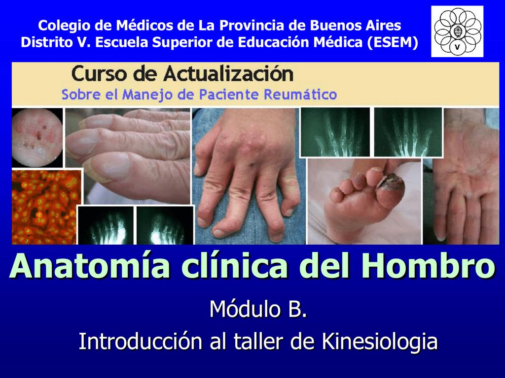 Anatomía clínica del Hombro