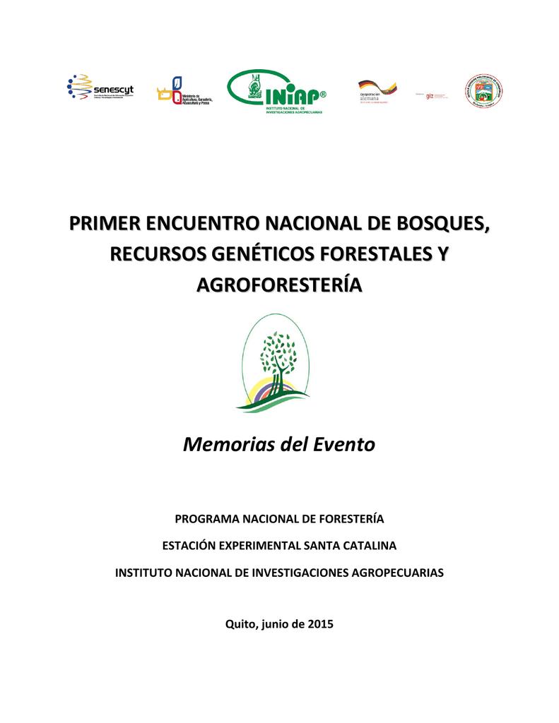 TOPmountain Semillas de /árboles de Banano Enanos,100 Piezas de /árboles frutales para la plantaci/ón de huertos caseros,f/áciles de Cultivar