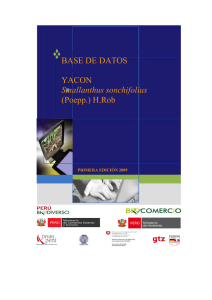 Base de Datos: yacón