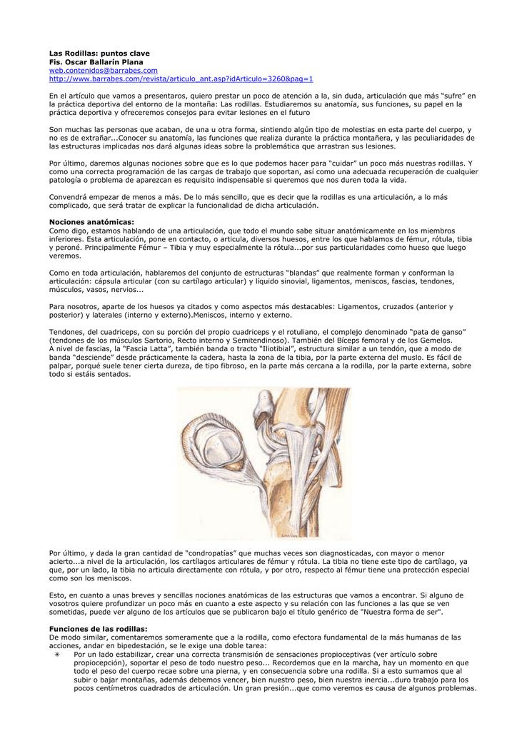 Las Rodillas: puntos clave