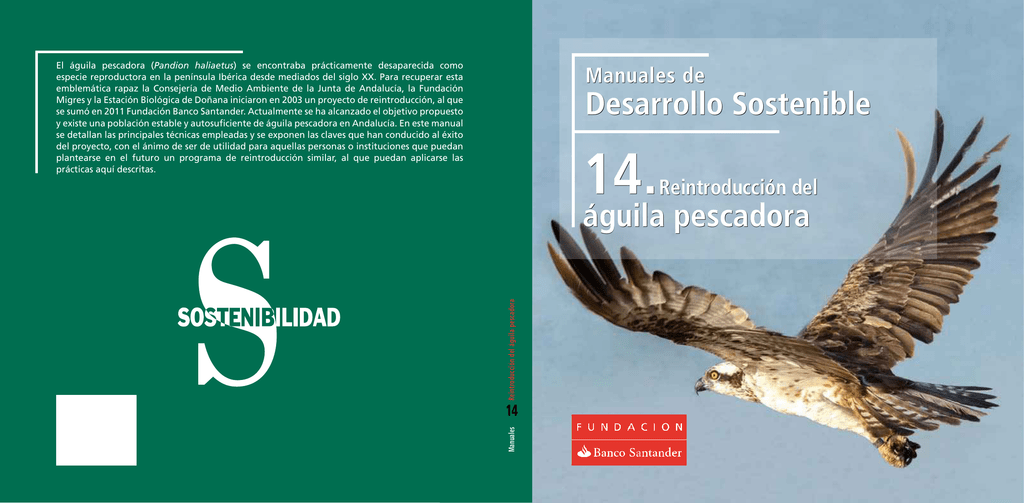 El Águila Pescadora: Pandion Haliaetus (El libro de las rapaces nº 22)