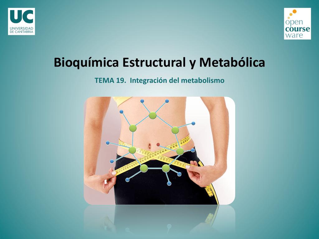 Metabolismo basal ideal