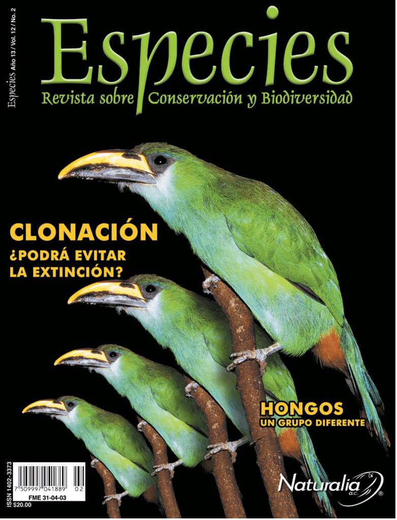 Zopilote rey reproduccion asexual en