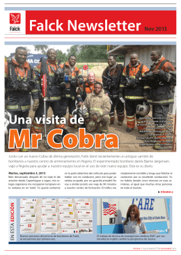 Falck Newsletter Nov 2013