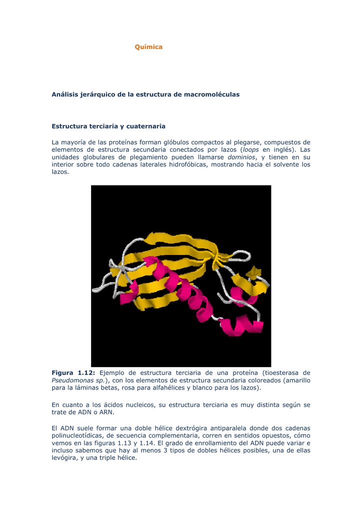 Quimica Nueve Analisis Jerarquico Estructura