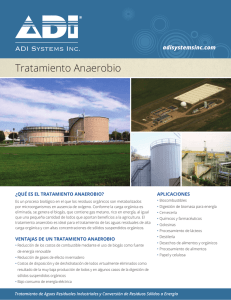 Flyer 3 - ADI Systems Inc.