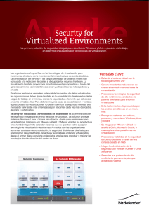 Virtualized Environments