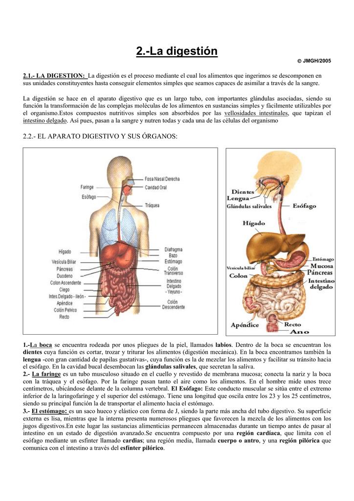 La digestión - IHMC Public Cmaps