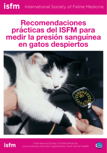 isfm - International Cat Care