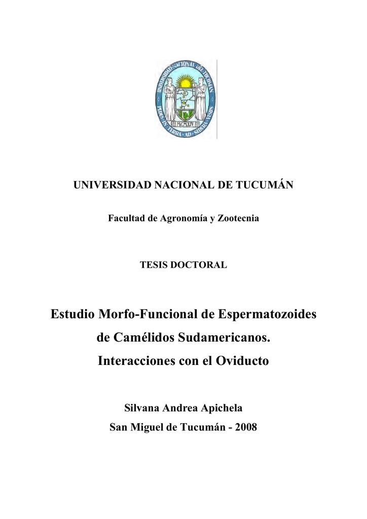 Estudio Morfo-Funcional de Espermatozoides de Camélidos
