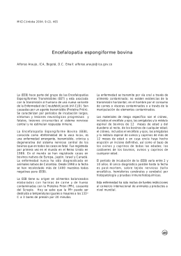 PDF english/español