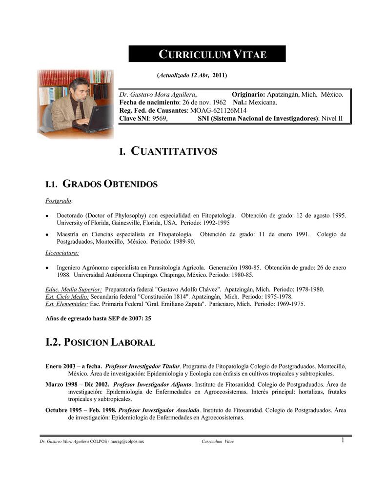 curriculum vitae i. cuantitativos