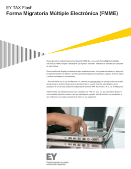 EY Tax Flash – Forma Migratoria Múltiple Electrónica (FMME)