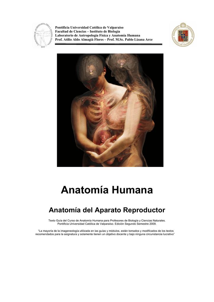 Anatomía Humana - Pontificia Universidad Católica de Valparaíso