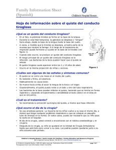 Family Information Sheet (Spanish)