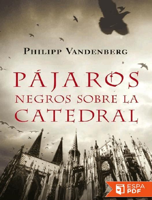 Pájaros negros sobre la catedral