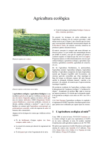 agriculura ecologica