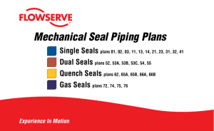 FLOWSERVE-Piping-Plan