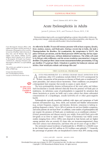Acute phyelonefritis in adults NEJM