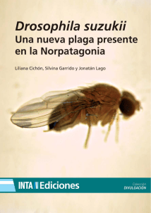 inta drosophila-suzukii