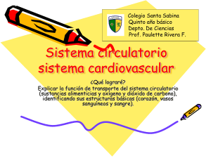 Sistema circulatorio, 2015 5to