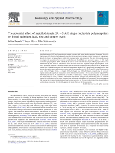 The potential effect of metallothionein 2A 5 A.G single nucleotide polymorphism